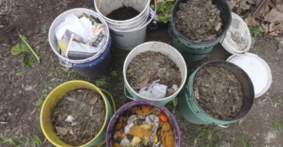 Compost en tachos de pintura