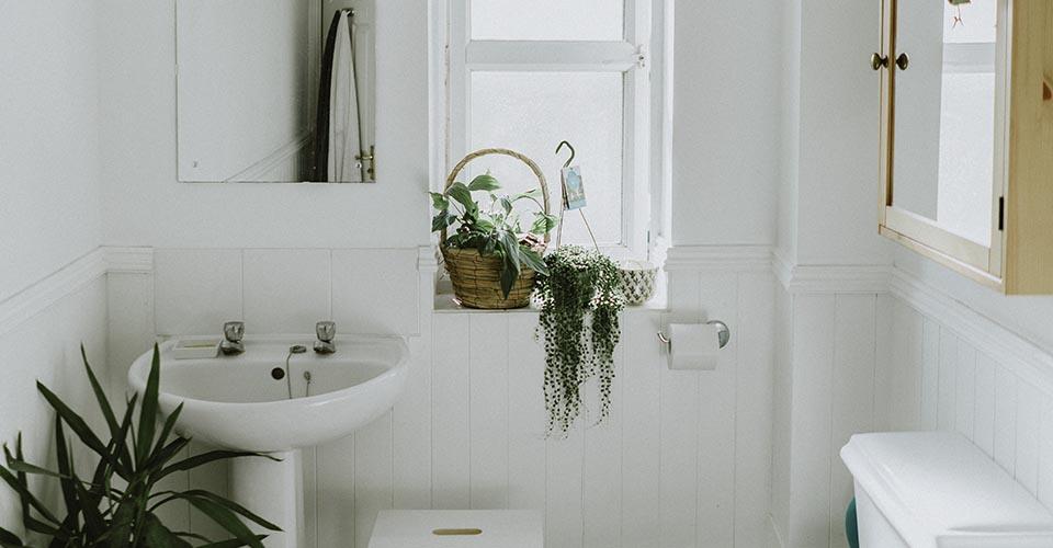 Baño blanco con plantas y ventanas
